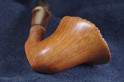morel pipe